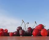 M.E.G. Früchte